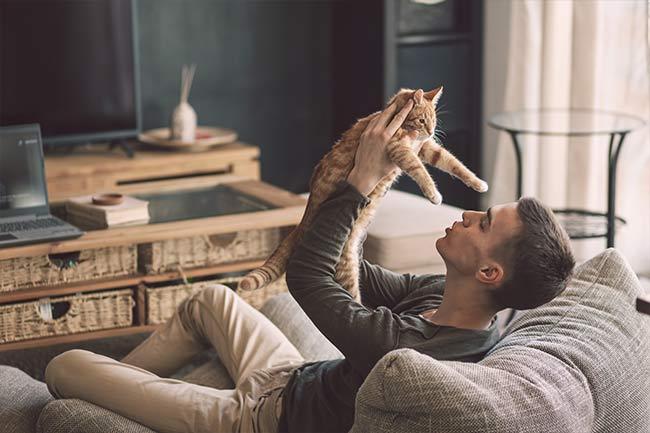 cat-veterinarian-vestavia-hills-al-2