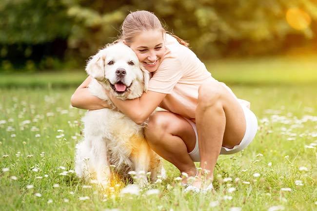 dog-veterinarian-vestavia-hills-al-4