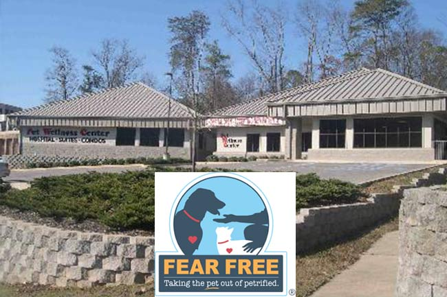 Fear Free Animal Clinic in Vestavia Hills