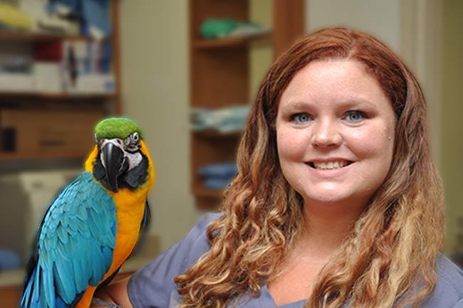 Avian Wellness Care in Vestavia Hills, AL