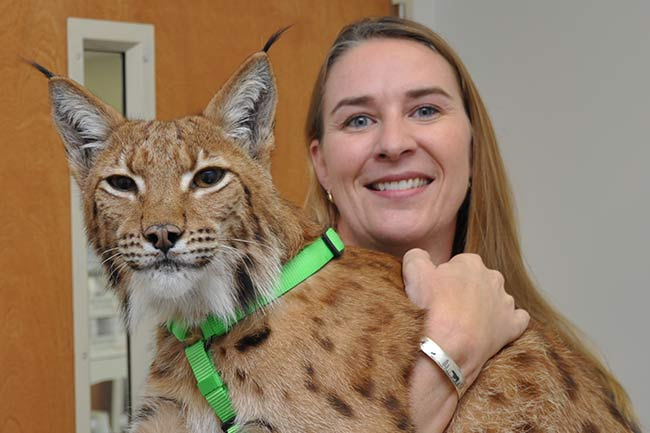 Exotic Veterinary Care in Vestavia Hills, AL